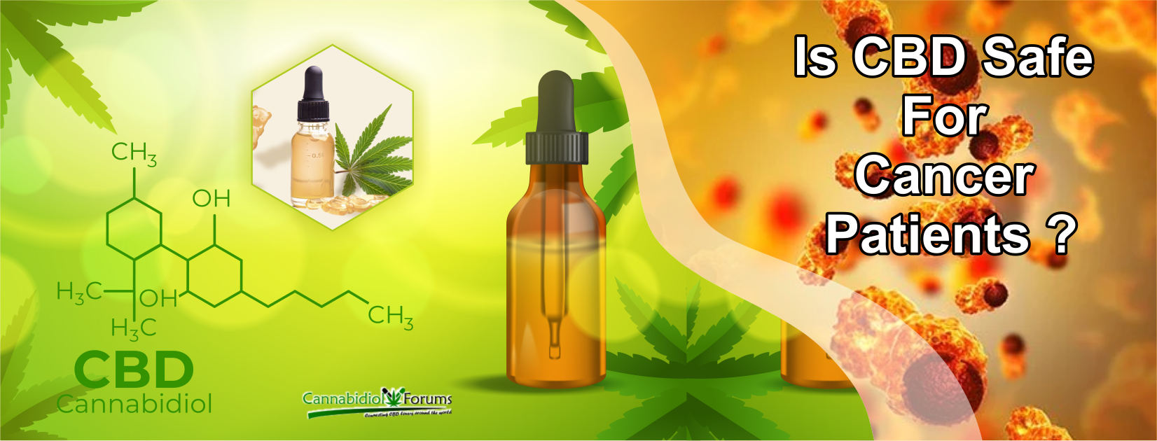 [Image: Is-CBD-safe-for-cancer-patients.png]